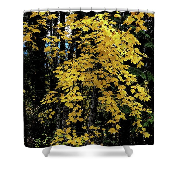 Moon Maple 2 Shower Curtain