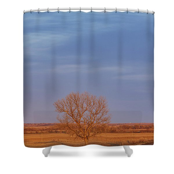 Moon Over Tree Shower Curtain