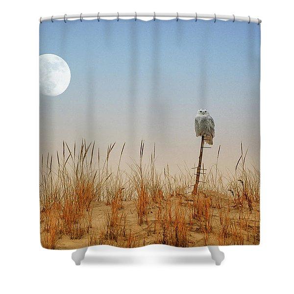 Moon Rise Snowy Owl Shower Curtain
