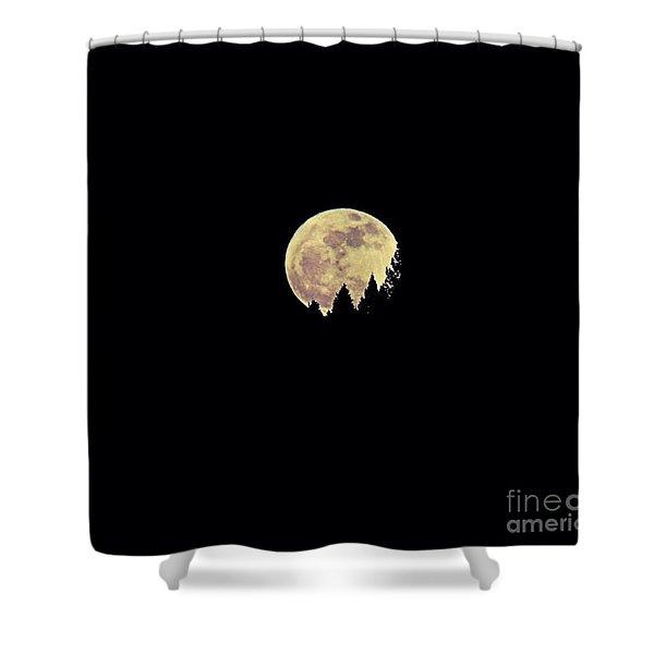 Moon Rising Shower Curtain