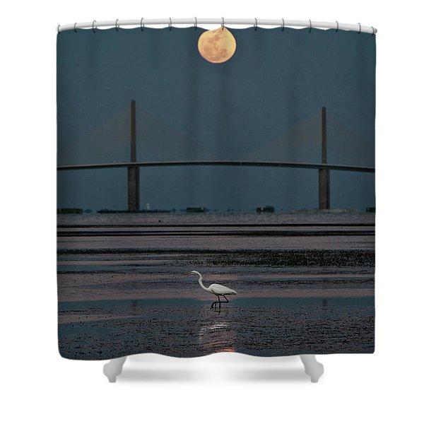 Moonlight Stroll Shower Curtain
