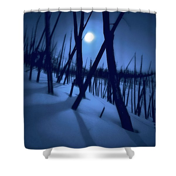 Moonshadows Shower Curtain