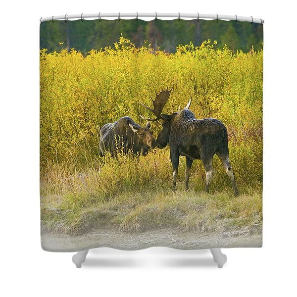 Moose Couple Shower Curtain