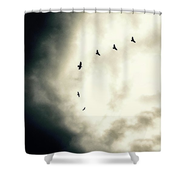 Big Sky Crows Shower Curtain