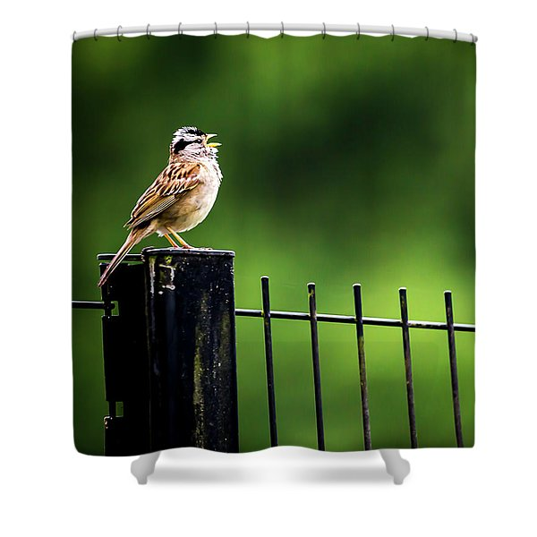 Morning Call Shower Curtain