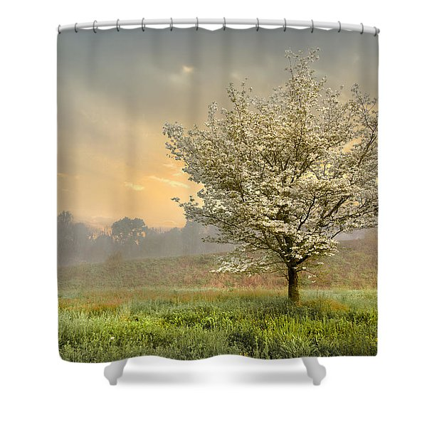 Morning Celebration Shower Curtain