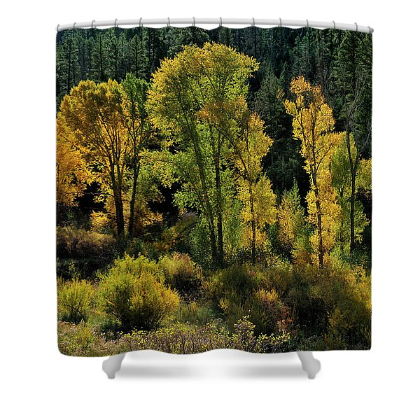 Morning Cottonwoods Shower Curtain