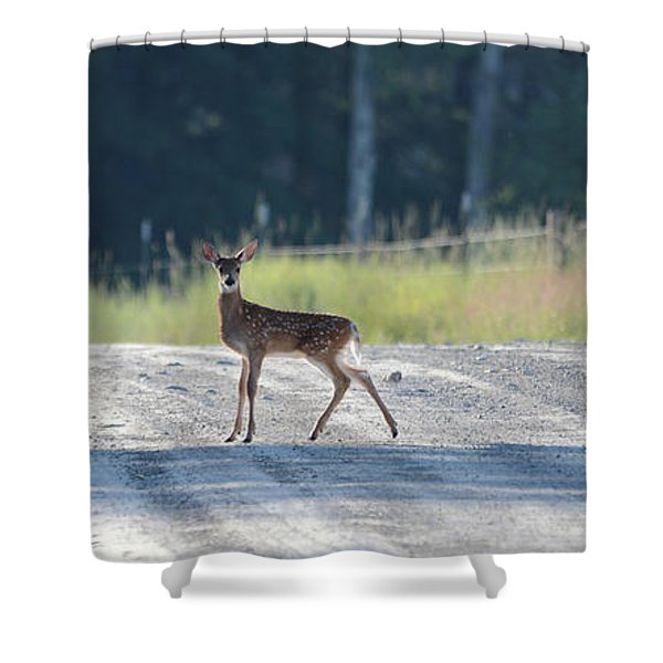 Morning Crossing Shower Curtain