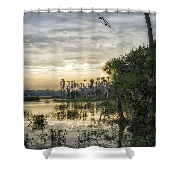 Morning Fly-by Shower Curtain