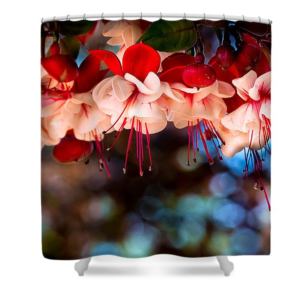 Morning Fuchsia Shower Curtain