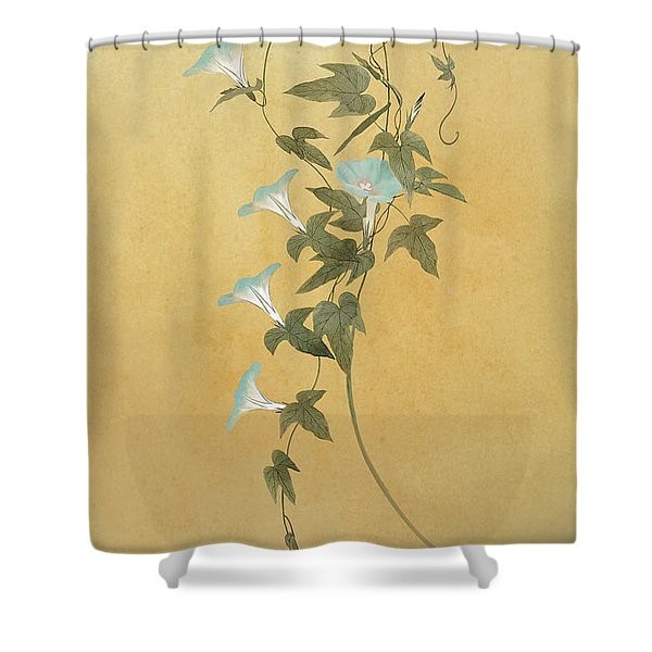 Morning Glories Shower Curtain