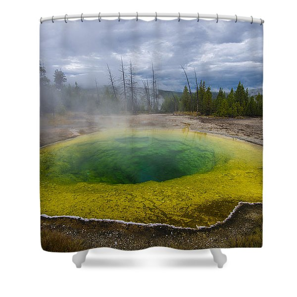 Morning Glory Pool Shower Curtain