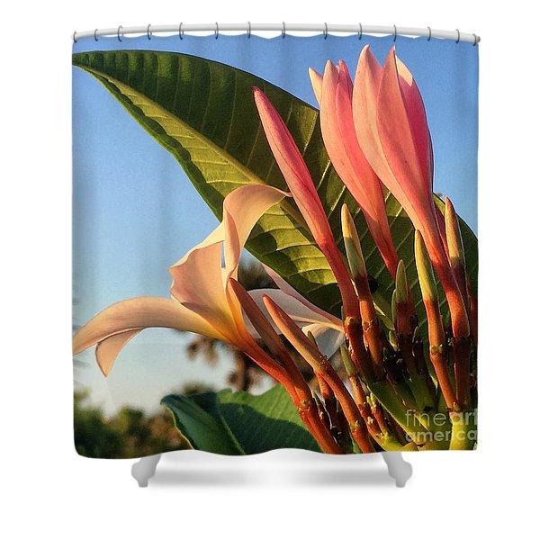 Morning Heaven Shower Curtain