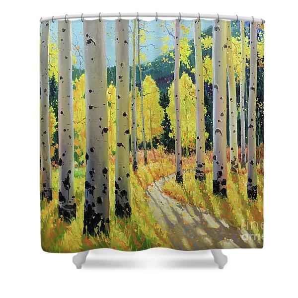 Morning Lights Of Aspen Trail Shower Curtain