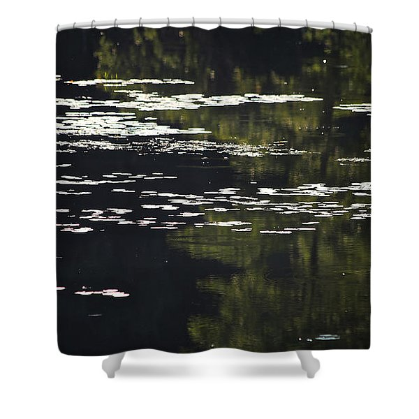 Morning Lily Pads Shower Curtain