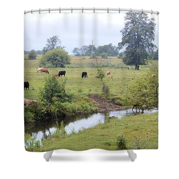 Morning On Coldwater Shower Curtain