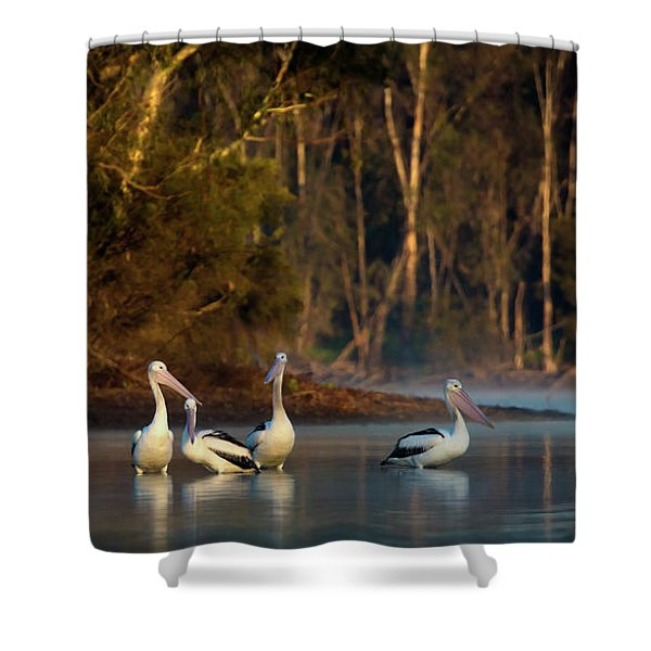 Morning On The River Shower Curtain
