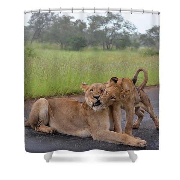 Morning Play Shower Curtain