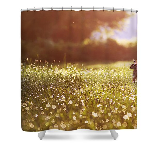 Morning Rabbit Shower Curtain