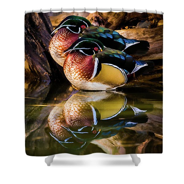 Morning Reflections - Wood Ducks Shower Curtain