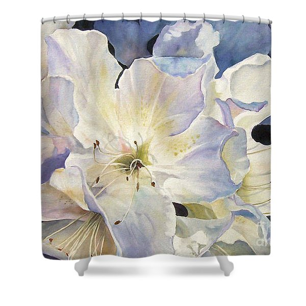 Morning Shadows   Sold Prints Available Shower Curtain