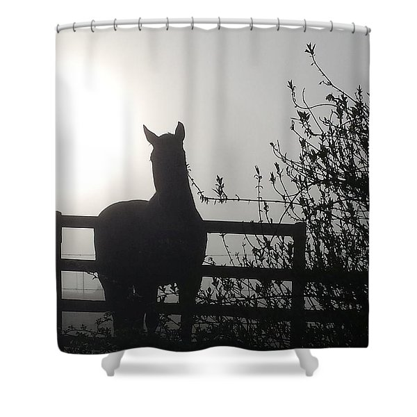 Morning Silhouette #1 Shower Curtain