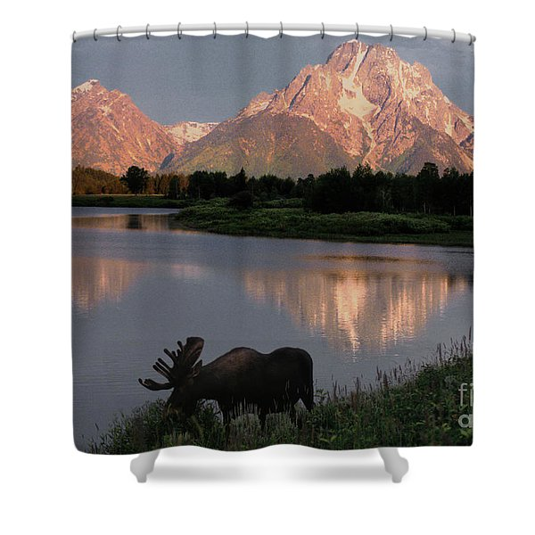 Morning Tranquility Shower Curtain