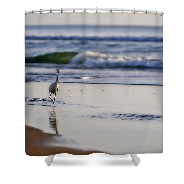 Morning Walk At Ormond Beach Shower Curtain