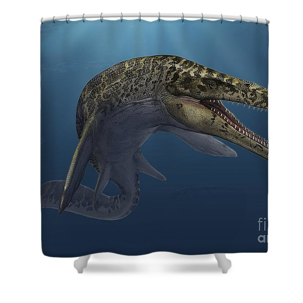 Mosasaurus Hoffmanni Swimming Shower Curtain