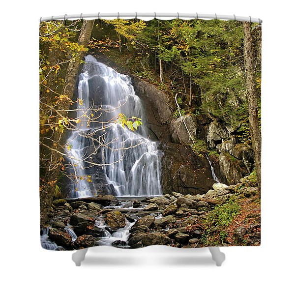 Moss Glen Falls Shower Curtain