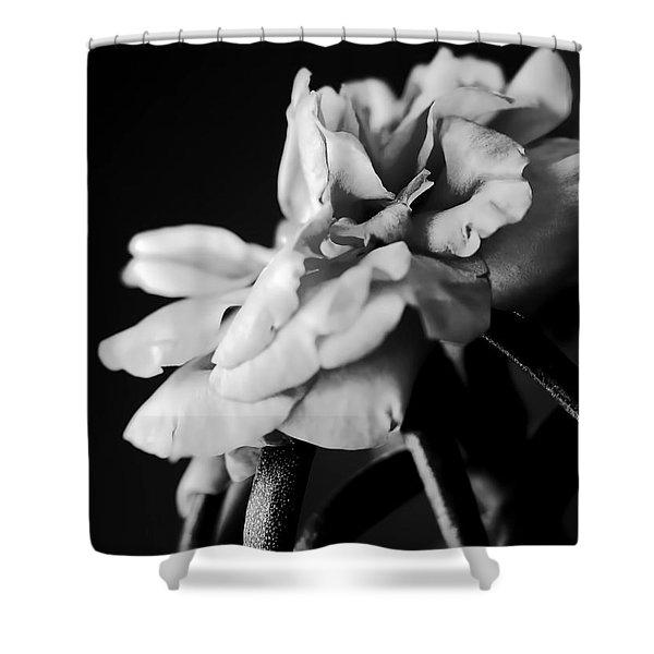 Moss Rose I Shower Curtain