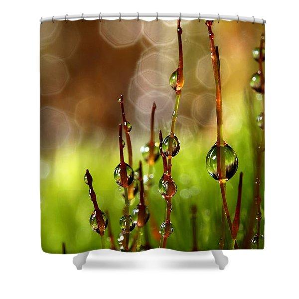 Moss Sparkles Shower Curtain