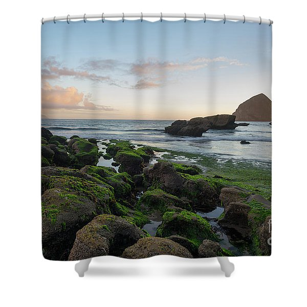 Mossy Rocks At The Beach Shower Curtain