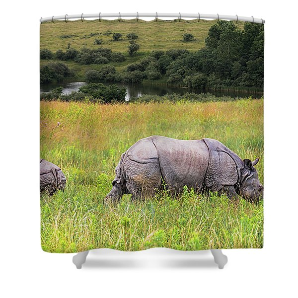 Mother And Baby Rhinos Shower Curtain