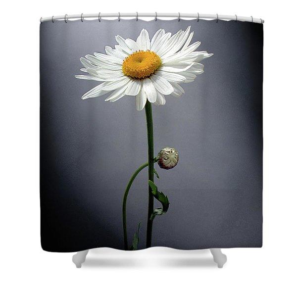 Mother Daisy Shower Curtain
