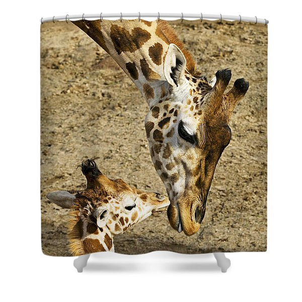 Mother Giraffe With Her Baby Shower Curtain