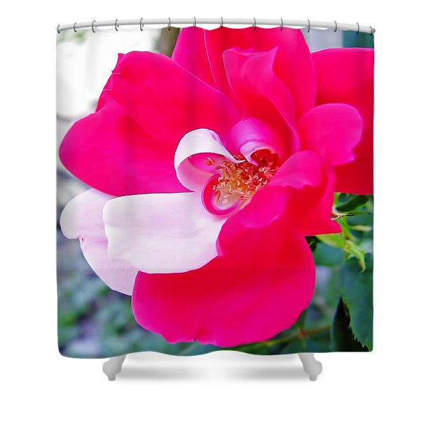 Mother - Natures - Best Shower Curtain