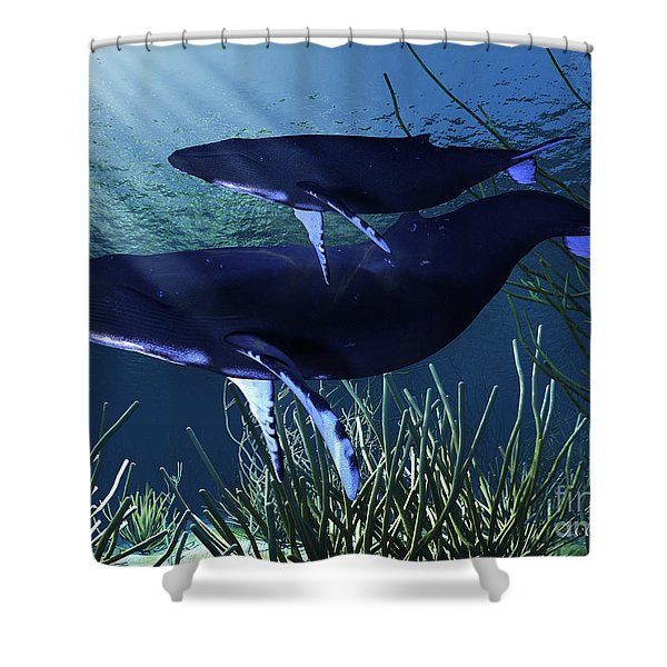 Mother Whale Shower Curtain