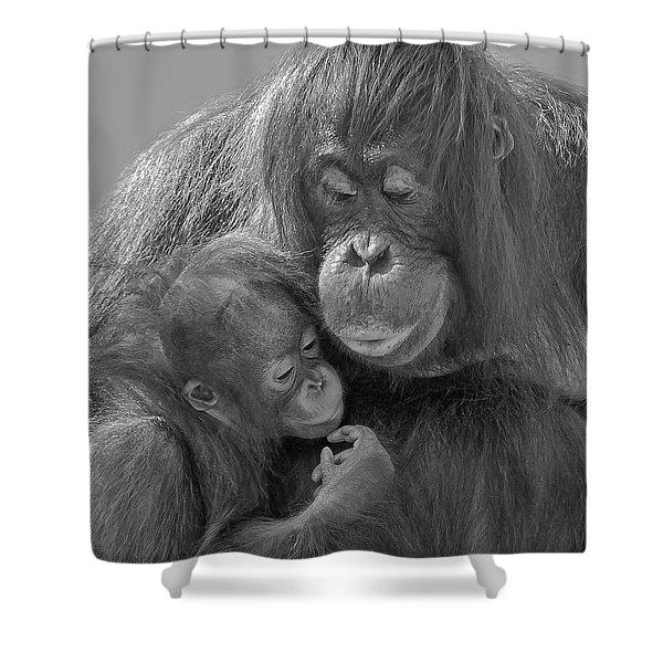 Motherhood 10 Shower Curtain