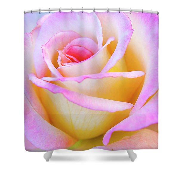 Shower Curtain featuring the photograph Mothers Day by David Millenheft