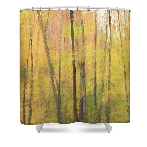 Motion In Color Shower Curtain