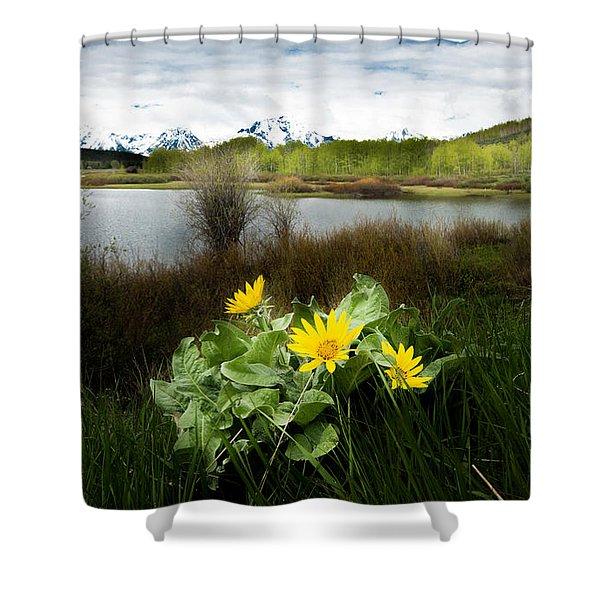 Mount Moran Spring Shower Curtain