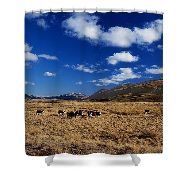 Mount Nicholas Station New Zealand Shower Curtain