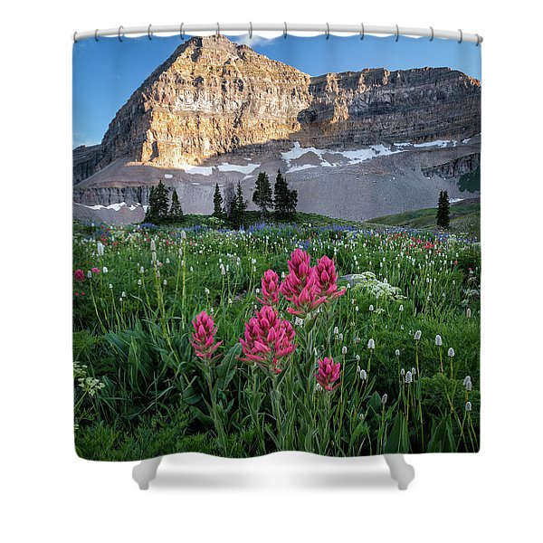 Mount Timpanogos Wildflowers Shower Curtain
