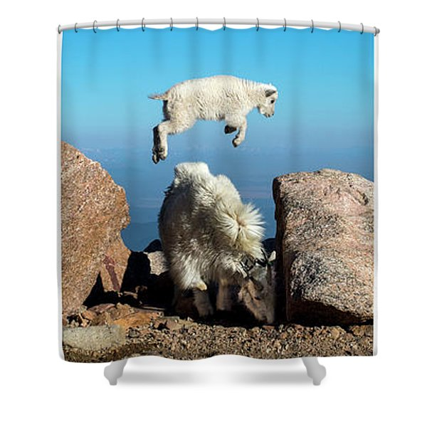 Mountain Goat Leap-frog Triptych Shower Curtain