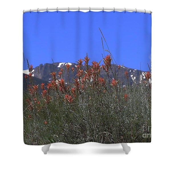 Mountain Gradure Shower Curtain