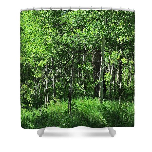 Mountain Greenery Shower Curtain