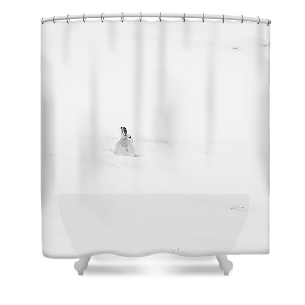 Mountain Hare Small In Frame Left Shower Curtain