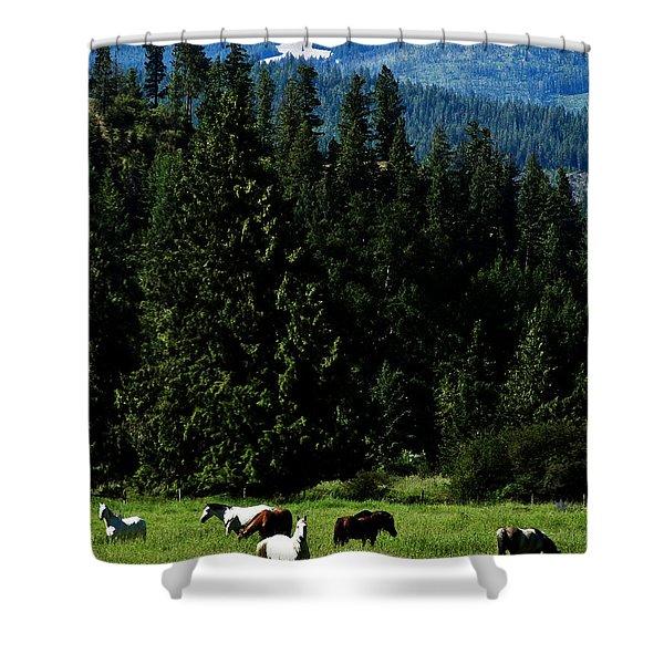 Mountain Herd Shower Curtain