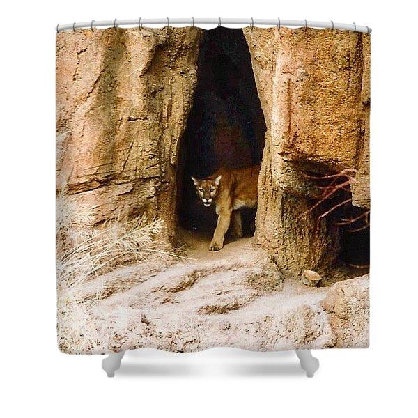 Mountain Lion In The Desert Shower Curtain